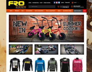 FRO Systems website design