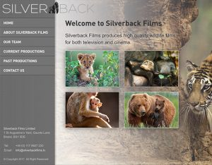 Silverback Films website design